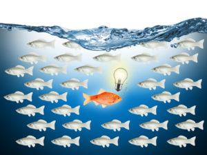 Ein Fisch schwimmt entgegen den Strom